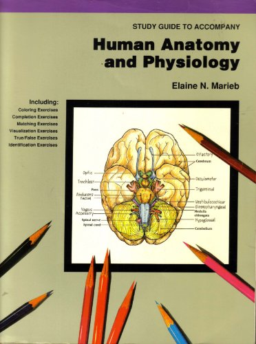 human anatomy physiology study guide Human anatomy & physiology has launched the careers of more than three million health care professionals with the newly revised tenth edition, marieb and hoehn introduce a clear pathway through a&p that helps students and instructors focus on key concepts and make meaningful connections each .