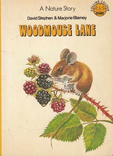Woodmouse Lane By David Stephen