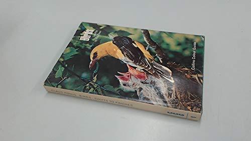 Birds By Claus Konig