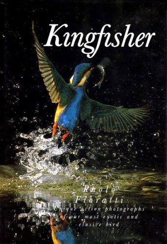 Kingfisher By Paolo Fioratti