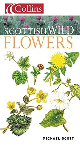 Scottish Wild Flowers By Michael Scott