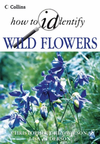 Wild Flowers By Christopher Grey-Wilson