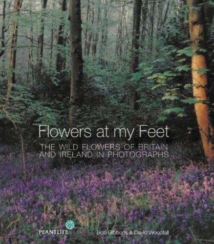 Flowers at My Feet By Bob Gibbons