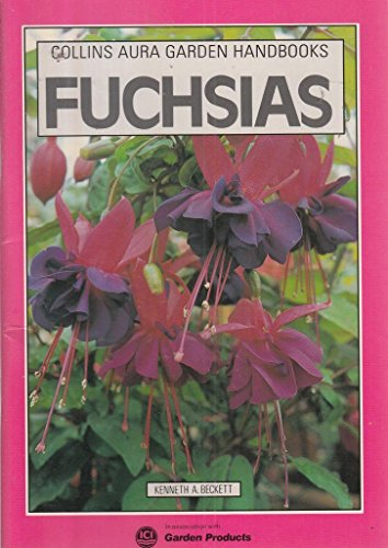 Fuchsias by Kenneth A. Beckett