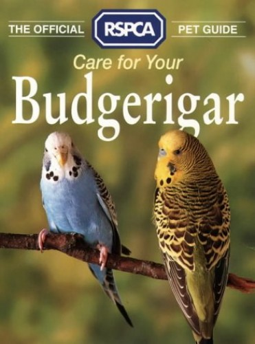Care for Your Budgerigar By Tina Hearne