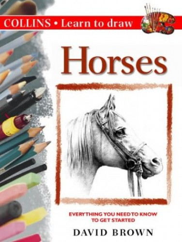 Drawing Lessons With Grids - Learn to Draw Horses ...