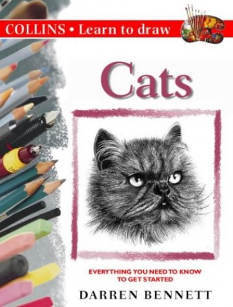 Cats By Darren Bennett