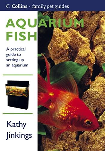 Aquarium Fish By Kathy Jinkings