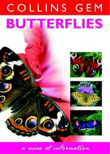 Butterflies and Moths By Michael Chinery