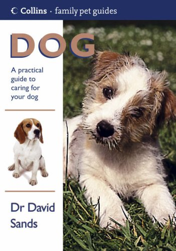 Dog By David Sands