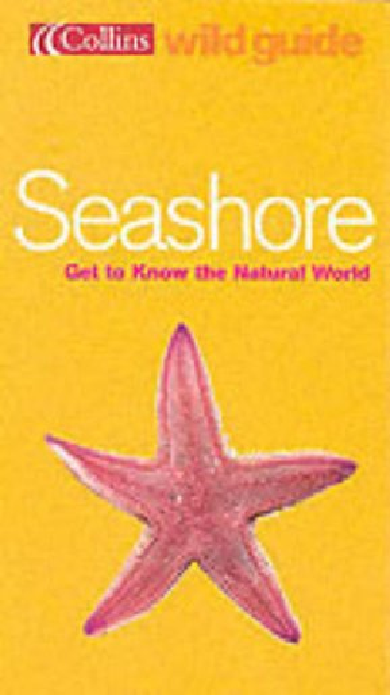 Seashore By Rod Preston-Mafham