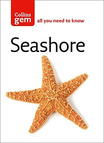 Seashore By Ken Preston-Mafham