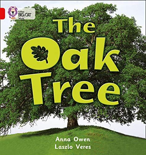The Oak Tree By Anna Owen