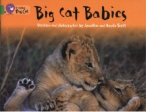 Big Cat Babies: Band 05/Green by Jonathan Scott