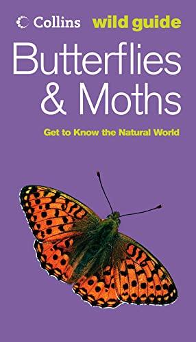 Butterflies and Moths By John Still