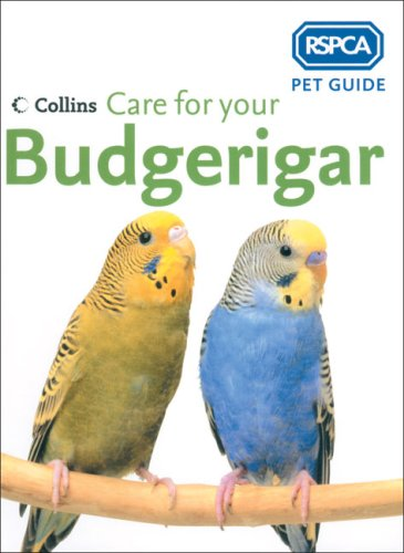 Care for Your Budgerigar By RSPCA