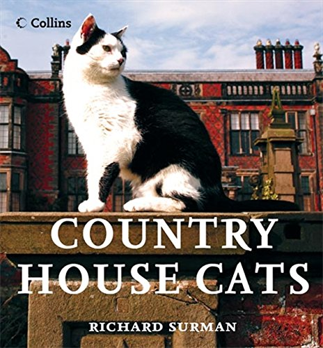Country House Cats By Richard Surman