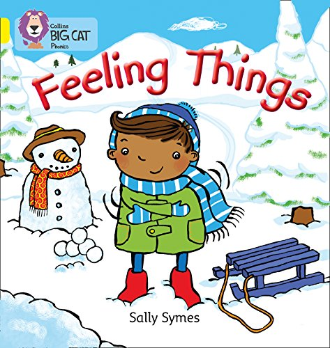 FEELING THINGS By Sally Symes