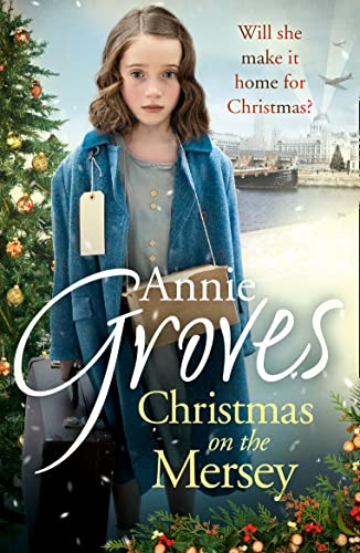 Christmas on the Mersey by Annie Groves