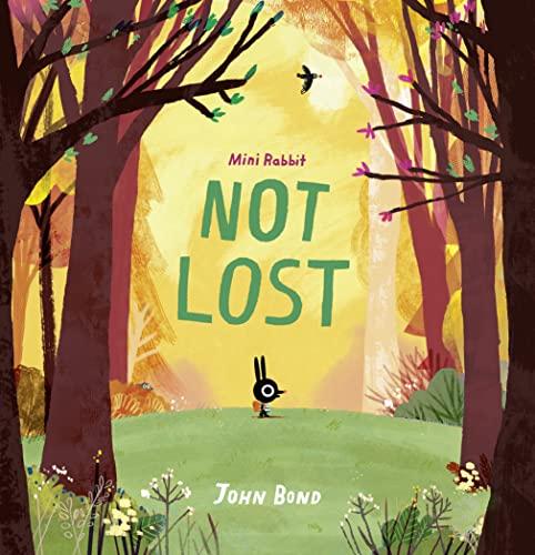 Mini Rabbit Not Lost By John Bond