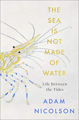 the sea is not made of water By Adam Nicolson