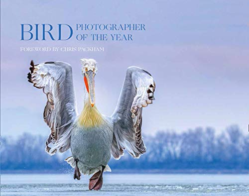 Bird Photographer of the Year By Bird Photographer of the Year