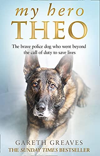 My Hero Theo By Gareth Greaves