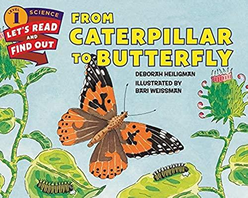 From Caterpillar To Butterfly von Deborah Heiligman
