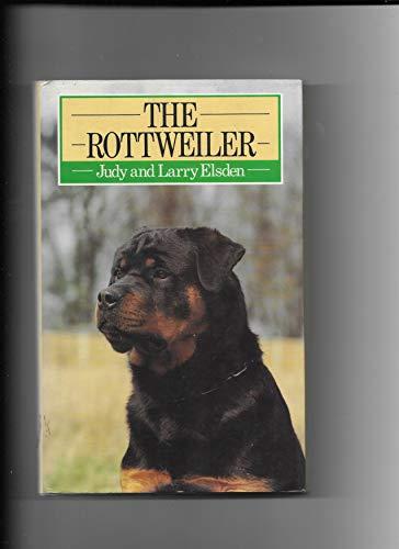 The Rottweiler By Judy Elsden