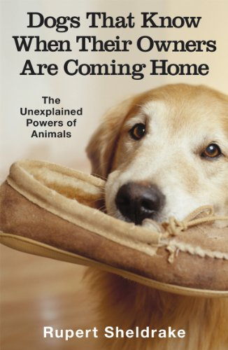 Dogs That Know When Their Owners Are Coming Home: And Other Unexplained Powers of Animals By Rupert Sheldrake
