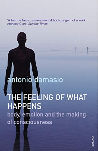 The Feeling of What Happens: Body, Emotion and the Making of Consciousness by Antonio R. Damasio