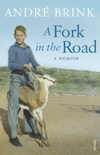 A Fork in the Road By Andre Brink