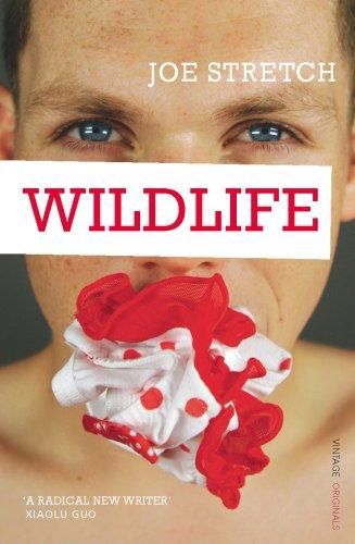 Wildlife By Joe Stretch