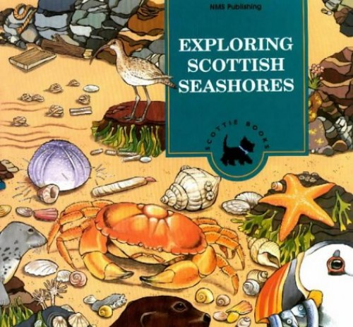 Exploring Scottish Seashores: Activity Book (Scottie Books) By National Museums of Scotland