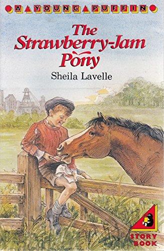 Strawberry Jam Pony By Sheila Lavelle
