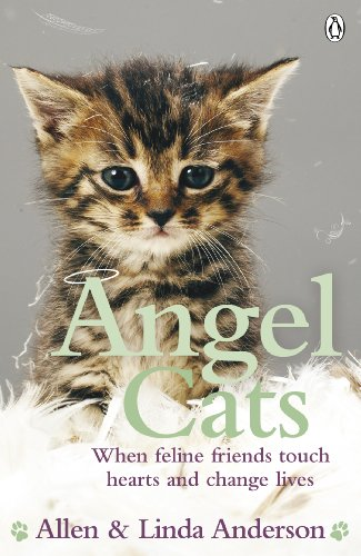 Angel Cats: When feline friends touch hearts and change lives By Allen Anderson