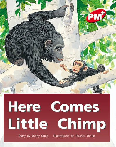 Here Comes Little Chimp By Jenny Giles