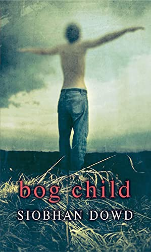Rollercoasters: Bog Child Reader by Siobhan Dowd