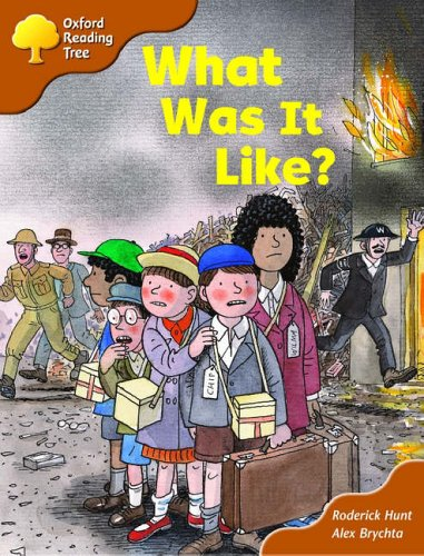 Oxford Reading Tree: Stage 8: More Storybooks (Magic Key): What Was It Like? By Roderick Hunt