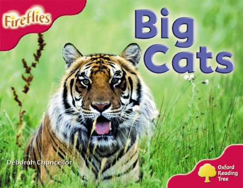 Oxford Reading Tree: Level 4: More Fireflies A: Big Cats By Deborah Chancellor