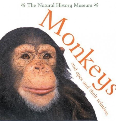 Monkeys and Apes and Their Relatives By Barbara Taylor