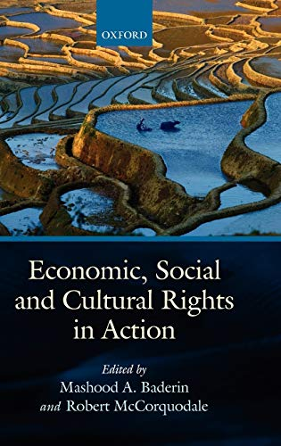 Economic, Social, and Cultural Rights in Action By Professor Mashood Baderin (Professor of Law, SOAS, University of London)