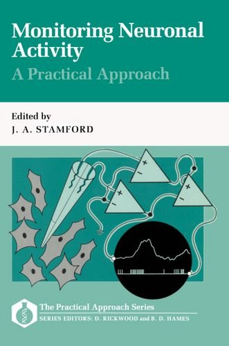 Monitoring Neuronal Activity By Edited by J. A. Stamford (Lecturer in Neuropharmacology, Anaesthetics Unit, Lecturer in Neuropharmacology, Anaesthetics Unit, Royal London Hospital, Alexandra Wing, Whitechapel, London)