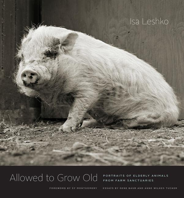 Allowed to Grow Old By Isa Leshko