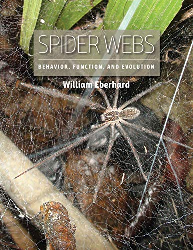 Spider Webs By William Eberhard