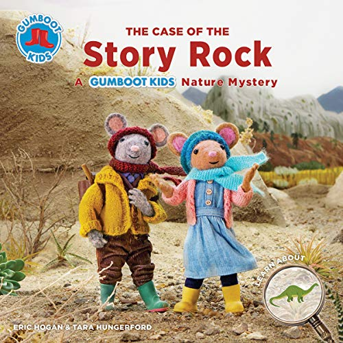 The Case of the Story Rock By Eric Hogan