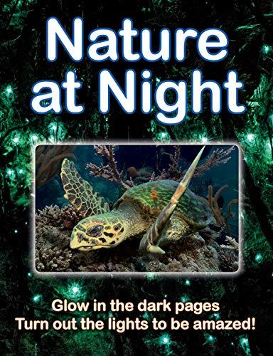 Nature at Night By Lisa Regan