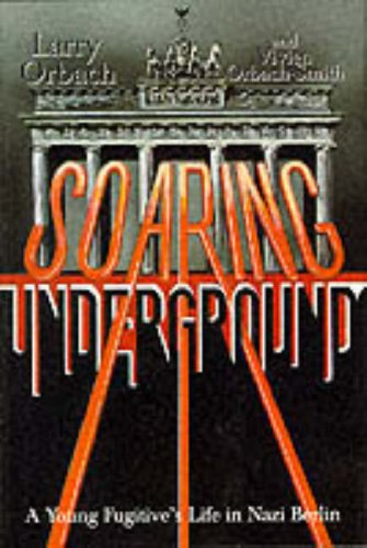 Soaring Underground By Larry Orbach