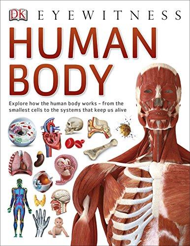 Human Body (DK Eyewitness) By DK