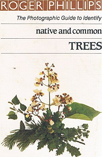 Native and Common Trees By Roger Phillips